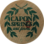 Capon Springs Activities | Caponchase Adventure